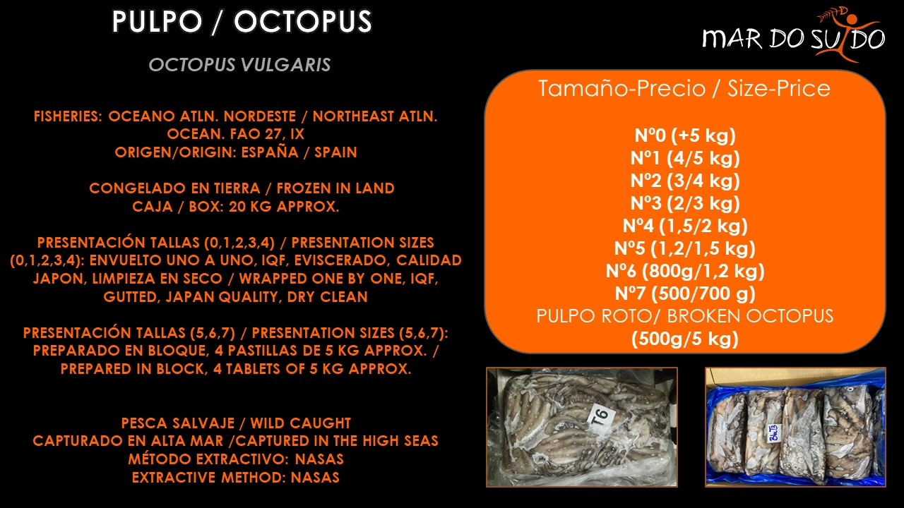 Oferta Destacada de Pulpo - Octopus Special Offer