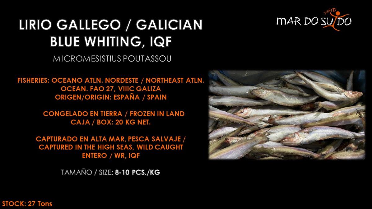 Oferta Especial de Lirio Gallego - Galician Blue Whiting Special Offer
