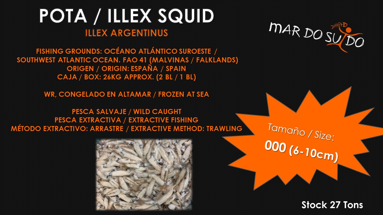 Oferta Destacada de Pota - Illex Squid Special Offer, Malvinas