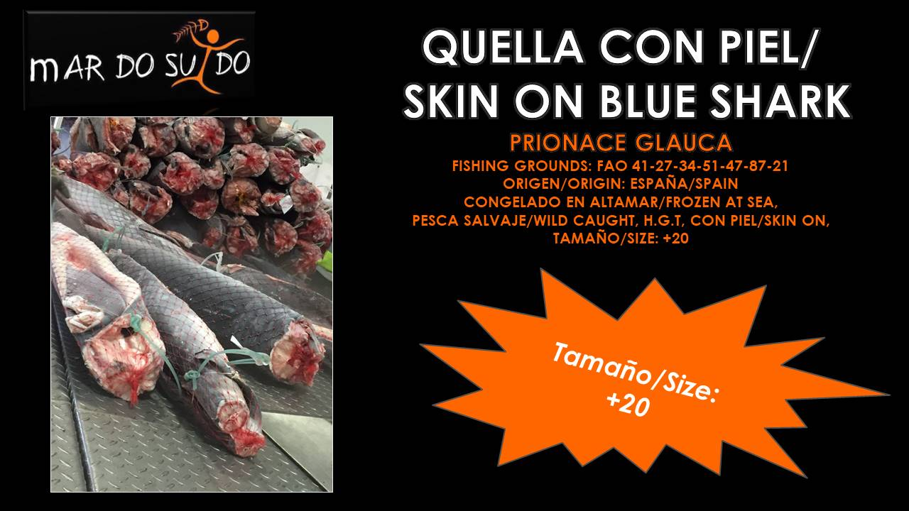Quella con Piel - Skin On Blue Shark