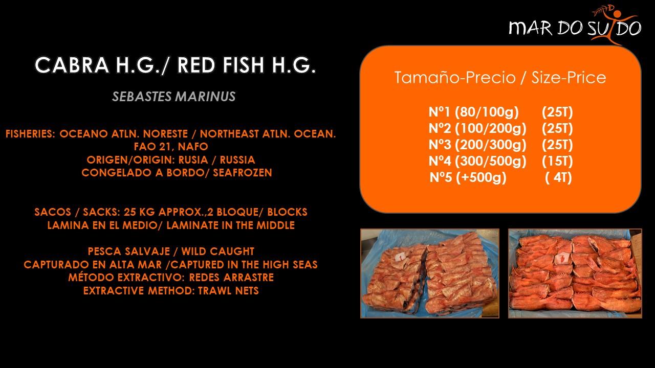 Oferta Destacada de Cabra H.G. - Red Fish H.G. Special Offer