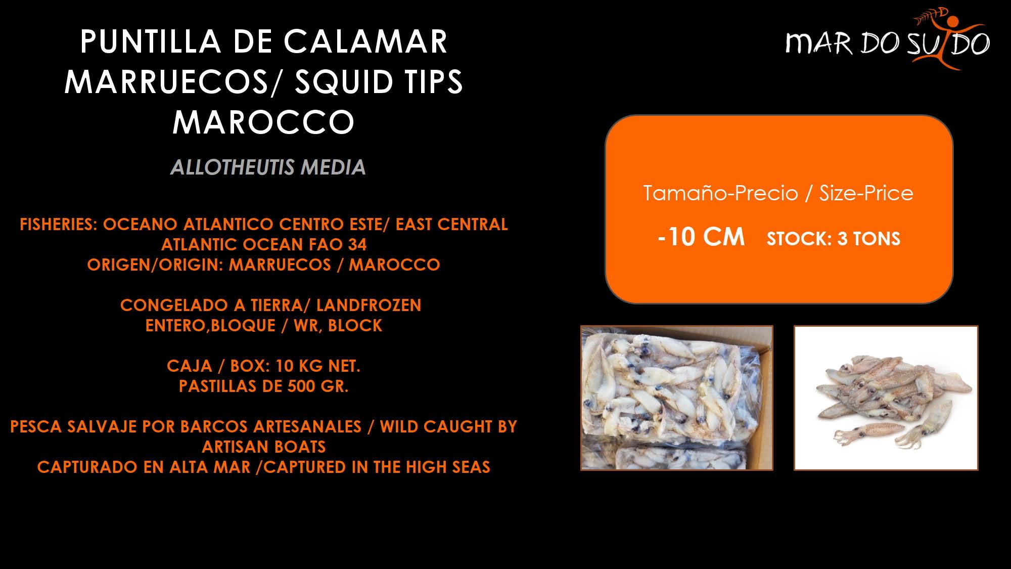 Oferta Destacada de Puntilla de calamar Marruecos - Squid Tips Marocco Special Offer