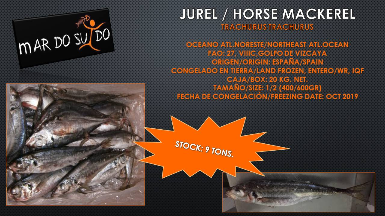 Oferta Destacada de Jurel - Horse Mackerel Offer