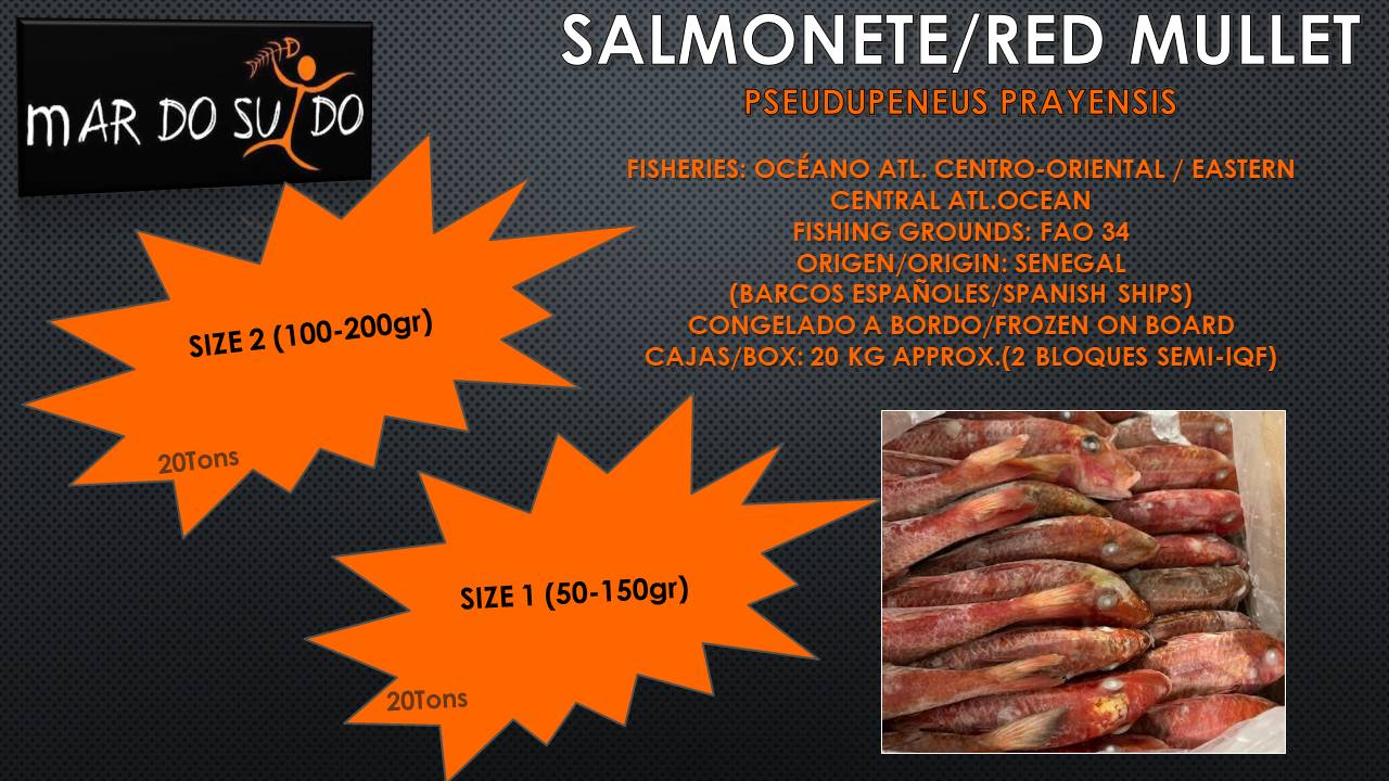 Oferta Destacada de Salmonete / Red Mullet Special Offer