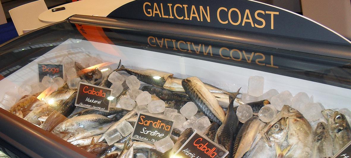 El pescado congelado de gran importancia en la cuesta de enero