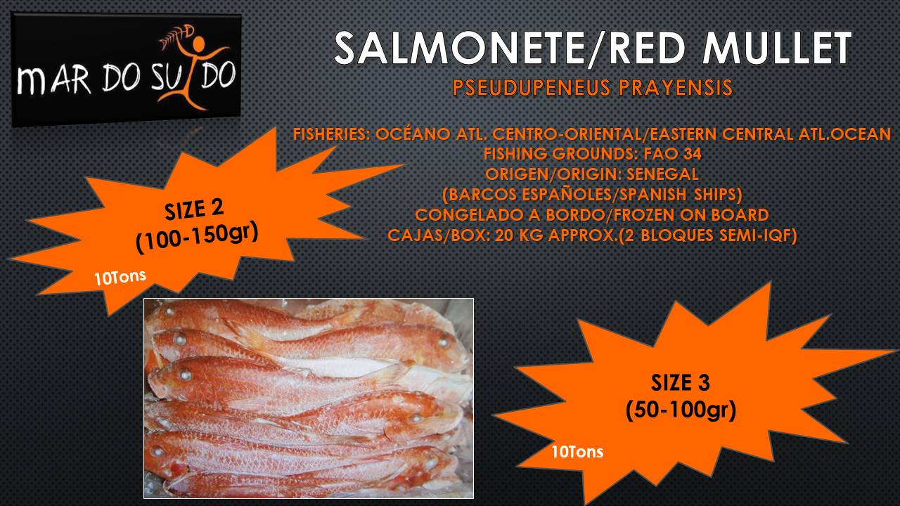 Oferta Destacada de Salmonete / Red Mullet Offer