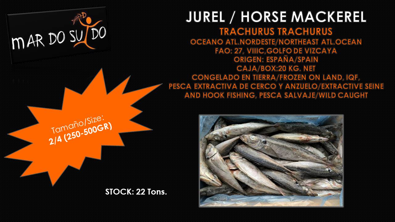 Oferta Destacada de Jurel - Horse Mackerel Special Offer